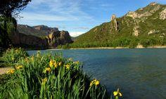 7 indrets ombrívols per anar a caminar i a gaudir de l'aigua seguint itineraris autoguiats de la plataforma Natura Local | Blog Natura Local