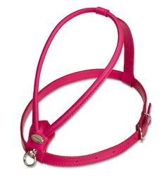 Petego La Cinopelca Soft Flat Calfskin Dog Harness * Quickly view this special dog product, click the image : Harnesses for dogs
