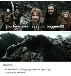 Thorin appreciates his hobbit Thranduil, Legolas, The Hobbit Thorin, Kili, Rings Tumblr, Hobbit Funny, Concerning Hobbits, Bagginshield, Jrr Tolkien