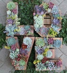 ✿*Cactus*✿*Suculentas*✿ Monogram Letter Vertical Garden by SucculentWonderland Vertical Garden Plants, Vertical Gardens, Vertical Planter, Cacti And Succulents, Planting Succulents, Succulent Gardening, Gardening Hacks, Gardening Tools, Bonsai Plante