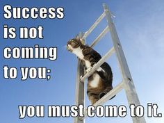 Growth Mindset Memes: English: Success is not coming to you; you must come to it.