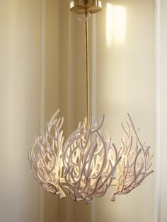 Coral chandelier.