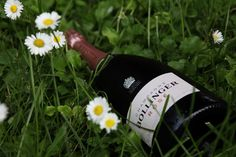 LIFE CAN BE PERFECT Magazine by Bollinger - Dare to drink Rosé - Can rosé champagne be paired with food? Indeed it can, if you choose the right cuvée.