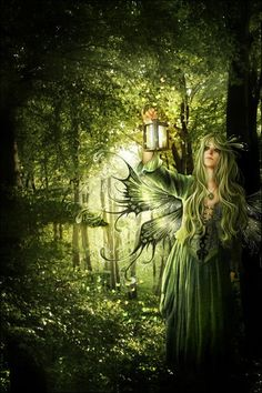 Forest Fairy - a faerie story for all ages by Ashlee North - The Chronicling of Ilithia - out soon  http://ashleenorthauthor.com/
