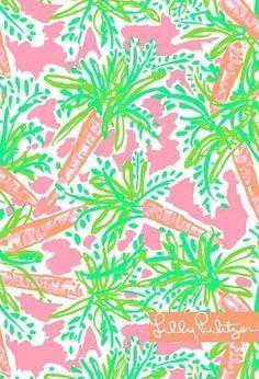 Lily pulitzer print