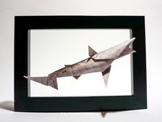 Framed Origami Shark This beautiful combination of the shark and the frame gives the impression that the shark is actual Origami Shark, Origami Animals, Colorful Animals, Delicate, Gallery, Frame, Projects, Beautiful, Art