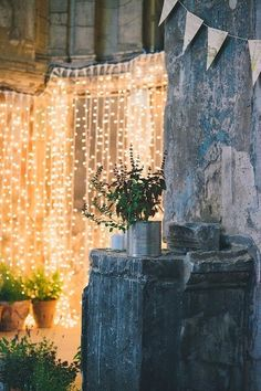 Use LED curtains to create a sparkling wall of light in your backyard! Great idea for parties or creating an illuminated backdrop for pictures.