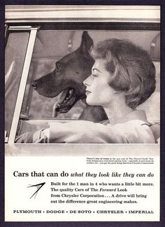 1959 Woman & Great Dane Dog in Car photo Chrysler Ad | eBay