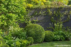 large-garden-in-barnes-4-charlotte-rowe-copyright-marianne-majerus_19121966184_o.jpg (1000×667)