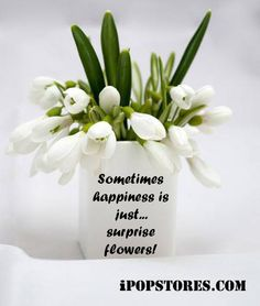 Surprise Flower Delivery Quotes