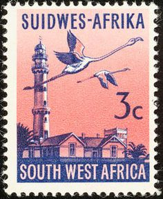 Swakopmund Lighthouse, Lesser Flamingo (Phoeniconaias minor)