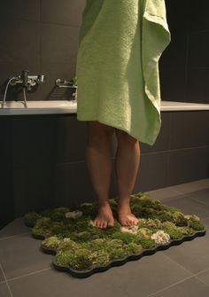 Trazer a natureza para o seu banheiro.