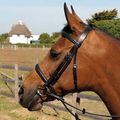 The Heritage English Leather Bridle With Raised Cavesson Noseband is handcrafted from the finest English leather with stainless steel fittings.  Shetland, pony, cob and full size, black and havana.