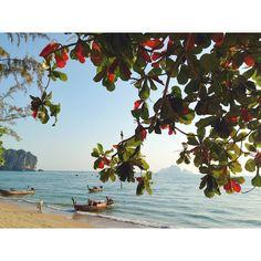 #krabi#thaistagram#thailand#thaitraveling#аняикатянаотдыхе#отпускначался#новыйгод2016 by shtepaa