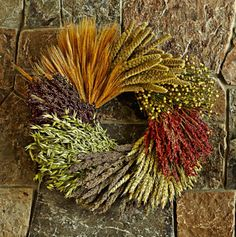 A spectrum of rich hues and lush textures, the arrangement includes (clockwise from top) flax, red broom corn, spray millet, avena, beardless green wheat, black sorghum, bearded blond wheat and Highlander millet