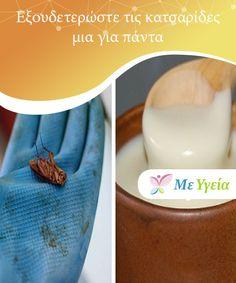 Dræb kakerlakker en gang for alle — Bedre Livsstil Opskrifter Garden Pests, Cleaning Hacks, Tips, Cooking, Kitchen, Brewing, Cuisine, Cook, Counseling