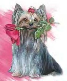 Happy Birthday birthday happy birthday birthday greeting birthday wishes animated birthday Dog Birthday Wishes, Happy Birthday Puppy, Twin First Birthday, Happy Birthday Pictures, My Daughter Birthday, Happy Birthday Quotes, Happy Birthday Cards, Doggy Birthday, Birthday Cakes