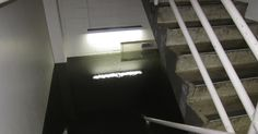 West Point treatment plant ill-prepared in growing Seattle region, contractor finds after flood