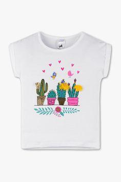 Les 76 meilleures images du tableau Cactus sur Pinterest   Cactus ... 1a7132880532