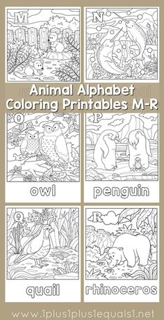 In The Works Backyard Birds Lapbook Animal AlphabetAlphabet LettersAlphabet Coloring PagesColoring BooksFree