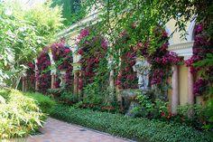 Villa Ephrussi de Rothschild, Cap Ferrat