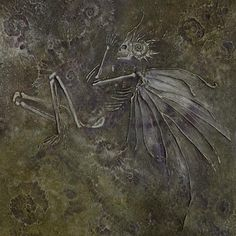 This nicely done fossilized fairy specimen comes to us from artist Stephanie Pui-Mun Law. Arte Grunge, Dragons, Dark Green Aesthetic, Fairytale Art, Forest Fairy, Fairy Art, Fantasy, Faeries, Drake