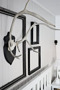 Mounted white antlers in frames. We could thrift frames and paint them red, or leave them wood.