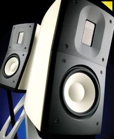 Raidho Acoustics C1.1