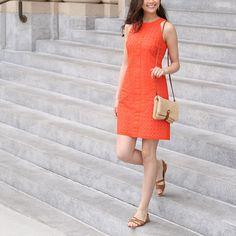 Stitch Fix: All Dressed Up - cute dress!