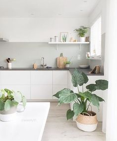 75 Small Apartment Kitchen Decorating Ideas - home/interior: accessoiries and things. - home decor Beautiful Kitchens, Scandinavian Kitchen, Interior Design Kitchen, Small Apartment Kitchen Decor, Home Kitchens, Minimalist Kitchen, Apartment Kitchen, Kitchen Decor Apartment, Kitchen Design