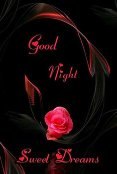 Good Night Love Messages, Good Night Love Quotes, Good Night I Love You, Good Night Prayer, Good Night Friends, Good Night Blessings, Good Night Greetings, Good Night Gif, Good Night Sweet Dreams