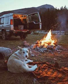 Camping is a good artifice to allow a cheap family vacation. Camping is a good artifice to allow a cheap family vacation. Learn how to save m… Camping is a Adventure Aesthetic, Camping Aesthetic, Travel Aesthetic, Camping Snacks, Camping Life, Family Camping, Camping 101, Camping Essentials, Camping Friends