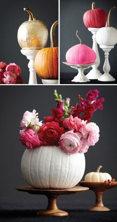Pretty pumpkins. Maybe not paint it white but to plant some fall flowers in would be so pretty