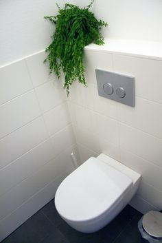 1000 images about wc ontwerp on pinterest toilets casablanca and modern toilet - Wc deco ontwerp idee ...