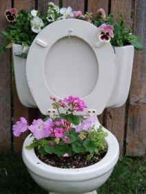 Toilet planter! Too funny.. I was just telling Mike to get rid of that old toilet, he said make a planter.. Lo and behold, Pinterest had ideas!