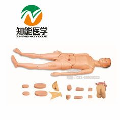 619.65$  Buy now - http://alixch.worldwells.pw/go.php?t=32550687320 - BIX-H130A  teaching model full function care manikin Spain freight free