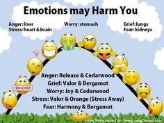 Young Living Essential Oils for Anger, Grief, Worry, Stress and Fear.
