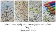 Secret Garden step by step - Day 3 - About pencil strokes