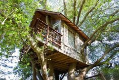AirBnB's most popular tree house is in Burlingame, California, overlooking San Francisco Bay. According to the site, co-owner Doug—who created the tree house originally for his children—is now looking into a career as a tree-house builder. Luxury Tree Houses, Cool Tree Houses, San Francisco Bay, Architectural Digest, Stay In A Treehouse, Treehouse Hotel, Old Oak Tree, Diy Holz, Bauhaus