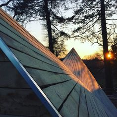 Timber roof, sunset.