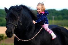 happy little rider. Big horse for such a little girl