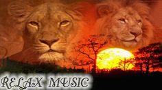 AFRICAN SAVANNAH, AFRICAN MUSIC RELAX,  RELAXING MUSIC, MUSICA RELAX, MU...