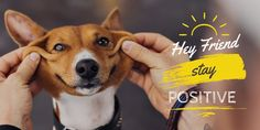 Dog Training: How to Completely  Train your Dog or Puppy