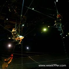 If watching the practice is this fascinating I can only imagine what #ovocirque is live! #behindthescenes
