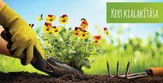 Gardening Tips And Tricks That Everyone Should Know Self Gardening When it comes to gardening tips and tricks, you should know that you can come up with some pretty cool ideas, even when the garden has not been plante. Vegetable Garden For Beginners, Gardening For Beginners, Gardening Tips, Flower Gardening, Spring Garden, Home And Garden, Lawn Sprinklers, Flower Garden Design, Kitchens
