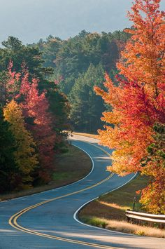 Talimena Curves - Talimena Scenic Drive