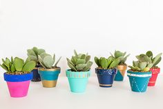 DIY Mini Painted Pots by LaurenConrad.com