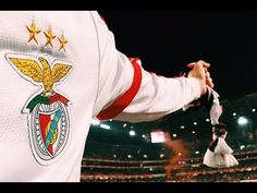 Love You All, Love Of My Life, Benfica Wallpaper, Football, Sports, Wallpapers, Portugal, Random, Places