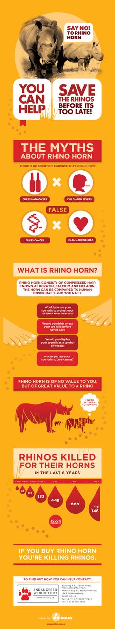 Rhino Awareness Infographic - by Max Golden