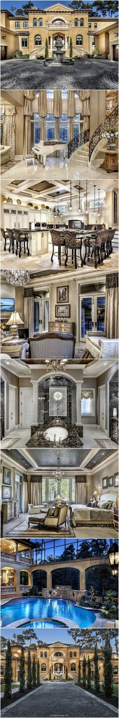Villa Belle Custom Home Plan By Sater Group
